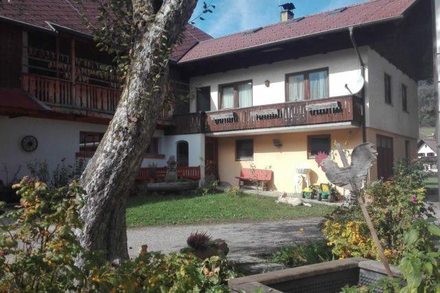 Gasthof Pension Loeffele - Ferienwohnung Hofgarten